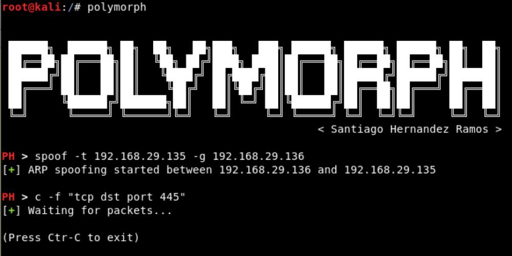 Polymorph – Real-time Network Packet Manipulation Framework