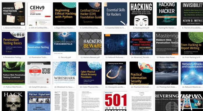 Top 100 Free Hacking Books PDF Collection 2018