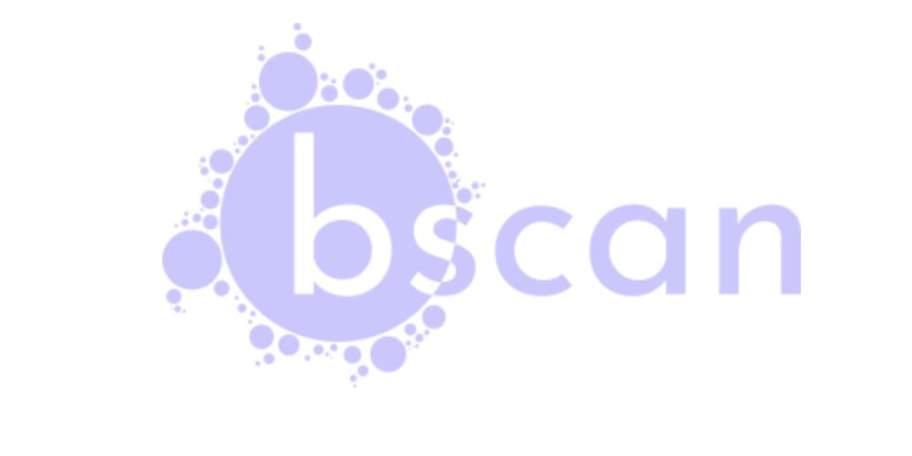 BScan – Asynchronous Target Enumeration Tool