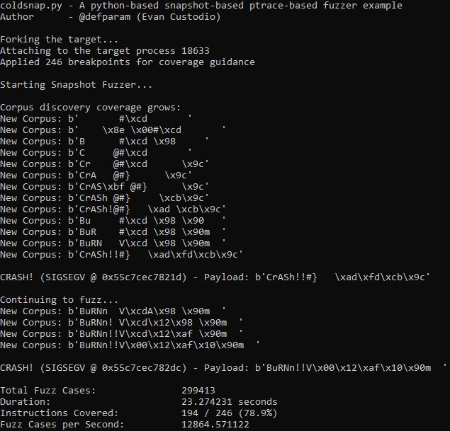 Coldsnap: Python Snapshot Fuzzer
