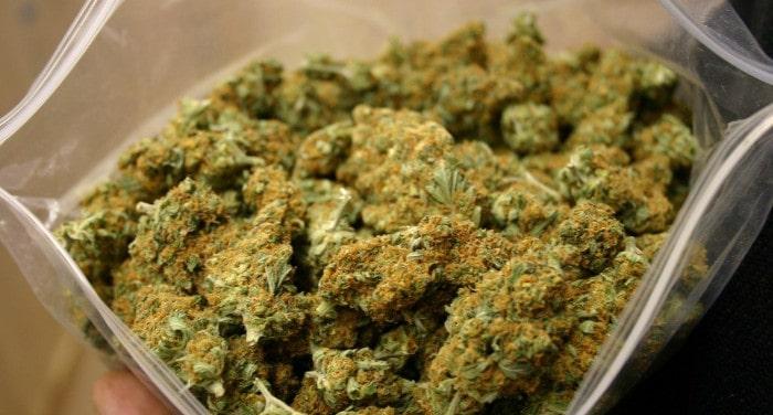 Irish Drug Dealer Avoids Prison in Marijuana Distribution Case