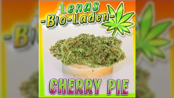 "Cannabis Vendor ""LenasBioLaden"" Sentenced to Prison"